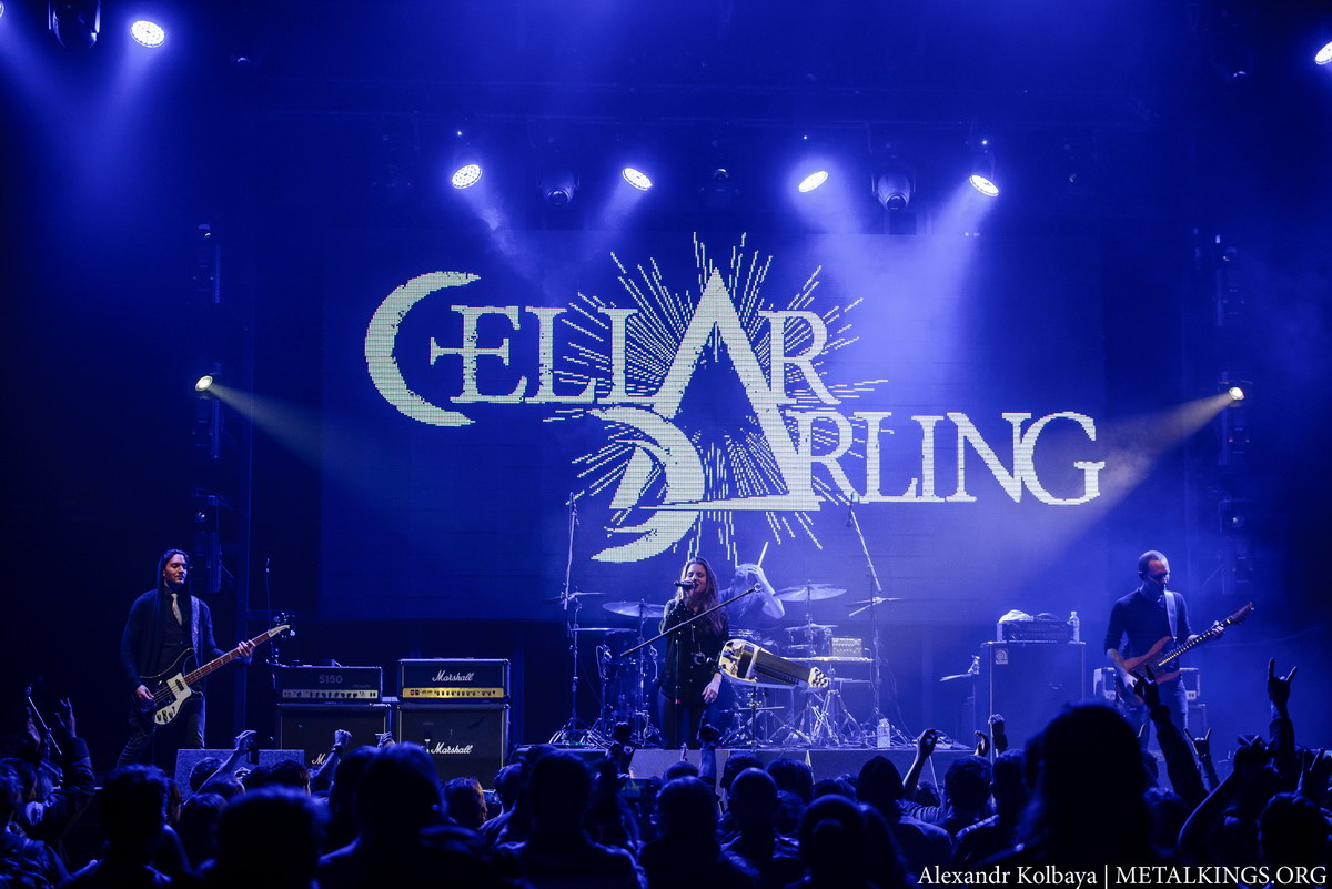 12 - Cellar Darling