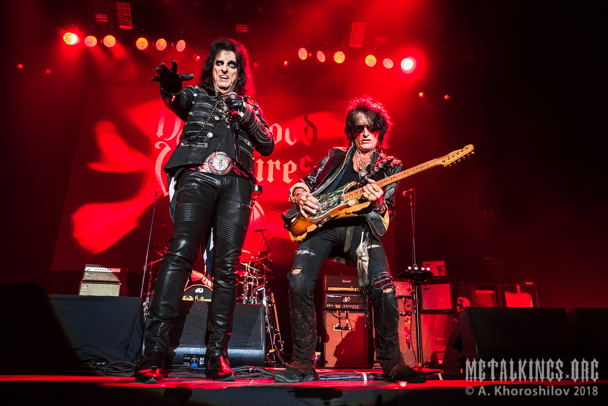 17 - Hollywood Vampires