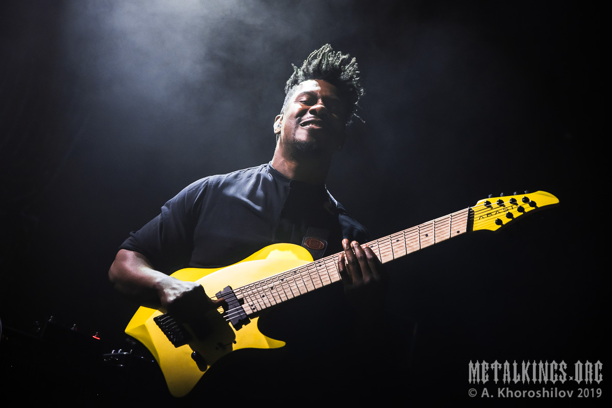 1 - Animals as Leaders