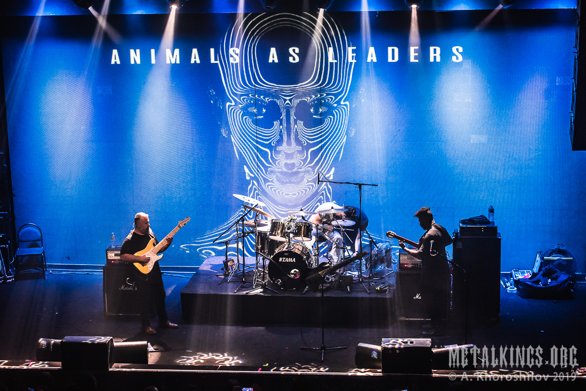 15 - Animals as Leaders