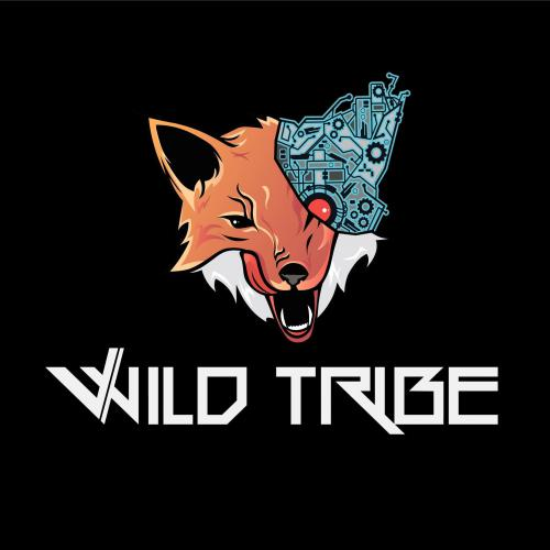 ">Первая часть альбома группы Wild Tribe ""Desperation Fire I"""